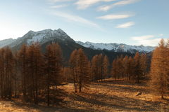 Mountains in Autumn Alps Piemonte Val di Susa Valle Argentera. Alpine view of mountains, Roc del Boucher, Valle Argentera, Val di Susa, Piedmont, in autumn with Royalty Free Stock Images