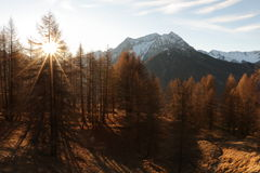 Mountains in Autumn Alps Piemonte Val di Susa Valle Argentera. Alpine view of mountains, Roc del Boucher, Valle Argentera, Val di Susa, Piedmont, in autumn with Royalty Free Stock Photography