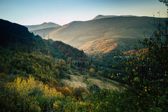 Mountains and autumn forest and blue sky. Mountains and autumn forest and blue sky Stock Image