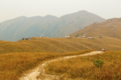 Mountains with autumn grasses Stock Image