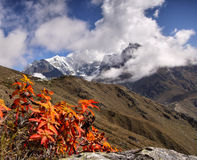 Mountains in autumn, Himalayas Royalty Free Stock Photography