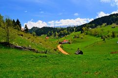 Mountains. Beautiful Mountain In Piatra Craiului Romania Stock Image