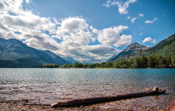 Log on Waterton Lake With Mountains Royalty Free Stock Image