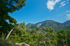 Mountains, blue sky and trees Royalty Free Stock Photos