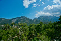 Mountains, blue sky and trees Stock Photography