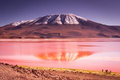 Mountains of Bolivia, altiplano Royalty Free Stock Images
