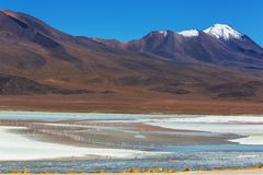 Mountains in Bolivia Stock Photography