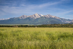Mountains, Buena Vista, CO. Royalty Free Stock Images