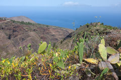 Mountains with cactuses at La Palma, Canary Islandss Stock Photo