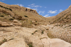 Mountains of the canyon Negev Desert in Israel Royalty Free Stock Images