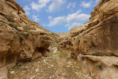 Mountains of the canyon Negev Desert in Israel Royalty Free Stock Image