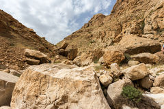 Mountains of the canyon Negev Desert in Israel Stock Image