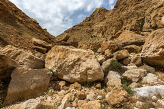 Mountains of the canyon Negev Desert in Israel Stock Images