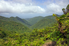 Mountains on Caribbean island of Dominica. Rainforest and mountains on Caribbean island of Dominica royalty free stock images