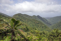 Mountains on Caribbean island of Dominica. Rainforest and mountains on Caribbean island of Dominica stock photo