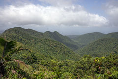 Mountains on Caribbean island of Dominica. Rainforest and mountains on Caribbean island of Dominica stock photography