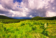 Mountains in the Carpathian reserve Stock Photography