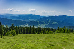 Mountains in the Carpathians Royalty Free Stock Photos