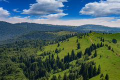 Mountains in the Carpathians Royalty Free Stock Photo