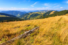 Mountains in the Carpathians Royalty Free Stock Photography