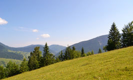 Mountains. Carpathians, Ukraine. Beautiful landscape with a kind on , trees and blue sky Stock Photos