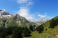 Mountains. Caucasus mountains. nice summer in the mountains Royalty Free Stock Photo