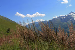 Mountains. Caucasus mountains. nice summer in the mountains Stock Images