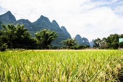 Mountains of china Royalty Free Stock Image