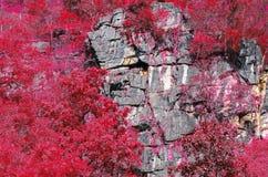 Mountains cliff Stock Photo