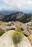 Mountains cliffs, beautiful landscape, Elba Island Stock Images