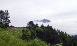 Mountains in the clouds. Elbrus. Mountains hidden dense blanket of clouds Royalty Free Stock Photo