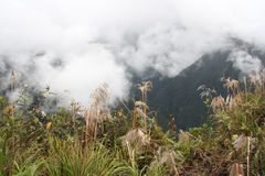 Mountains in clouds, Death road, Yungas, Bolivia Royalty Free Stock Photos