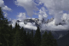 Mountains in the clouds. With the forest Royalty Free Stock Photos