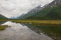 Mountains and Clouds Reflecting in Kenai Marsh Stock Image