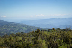 Mountains at Colombia. Landscape of colombian mountains, on a sunny day with a clear blue sky Royalty Free Stock Photos