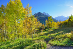 Mountains with colorful aspen during foliage season Stock Photography