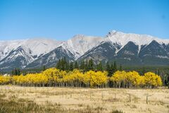 Mountains with colorful yellow trees