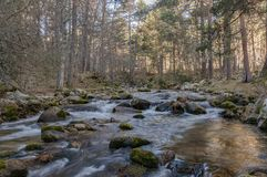 Water streams, rocks, trees and beatiful sky. Through the mountains of the community of Madrid it is common to find currents of water that meander between rocks royalty free stock photos