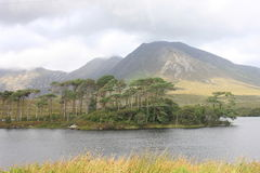 Mountains at Connemara National Park, Ireland. Connemara National Park is a vast expanse of mountains, bogs and lakes Stock Image