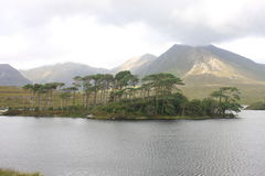 Mountains at Connemara National Park, Ireland. Connemara National Park is a vast expanse of mountains, bogs and lakes Royalty Free Stock Photography