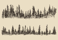Mountains Contours Fir Forest Engraving Vector Stock Images
