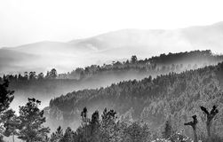 Mountains covered by fog Royalty Free Stock Images