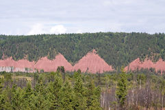 Mountains covered with forest, with taluses red rocks, BAM. Russia royalty free stock photos