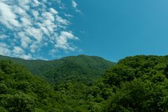 Mountains covered with green vegetation. Ecologically clean area, resort, nature reserve royalty free stock images