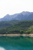 Mountains covered by pine forests descending to lake Stock Photography