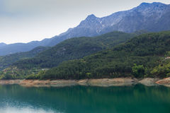 Mountains covered by pine forests descending to lake Stock Photo