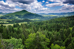 Mountains covered in pine trees Royalty Free Stock Photography