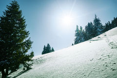 Mountains covered by snow Royalty Free Stock Photos