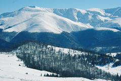 Mountains covered in snow. Mountains in Romania, covered in snow Royalty Free Stock Photo