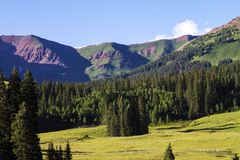 Mountains in Cressted Butte near Gothic, Colorado. Green Fields and Treed Peaks Stock Photos
